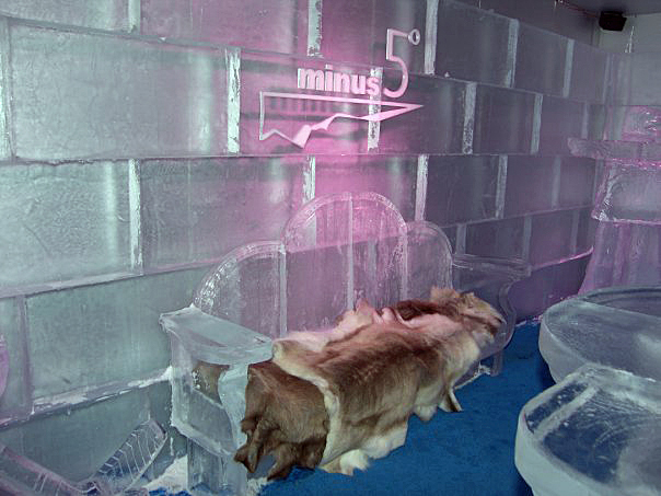 Minus 5 Degree Ice Bar by Ice Occasions